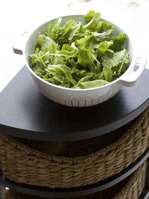 Lettuce1small_2